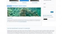 www.seaquaticaquariums.com